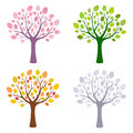 Tree in four season spring summer autumn and winter Stock Image