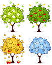 Tree four seasons of spring summer autumn winter in a isolated on white background Royalty Free Stock Photos