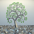 Tree from golden section elements. Royalty Free Stock Image