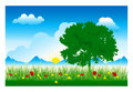Tree and Grass (Vector) Royalty Free Stock Photo