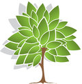 Tree with green leaves illustration on a white background Royalty Free Stock Photos