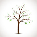 Tree with green leaves vector illustration Stock Photo