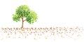 Tree and ground