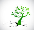 Tree growing from a hole illustration design over white background Stock Images