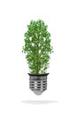 Tree growing out bulb white background green energy eco concept Royalty Free Stock Photos