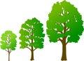 Tree Growth/eps