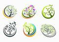 Tree health,logo,nature,spa,sign,massage,icon,plant,symbol,yoga and growth education concept design