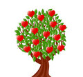 Tree with heart. valentine's day theme Royalty Free Stock Image