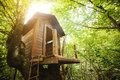 Tree house in the garden. Royalty Free Stock Photo