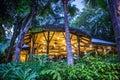 Tree House Restaurant In Disne...