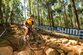 Tree house rock garden practice pietermaritzburg south africa april candice neethling velolife during finals u of round uci mtb Stock Images