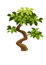 Tree illustration of a and graphic of jungle Stock Photography