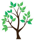 Tree isolated illustration of a lone with green leaves Stock Photo