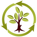 Tree with leaves and recycling symbol Stock Image
