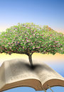 Tree of life bible photo blossom growing out depicting and knowledge Royalty Free Stock Photo