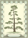 Tree of life - genealogy Royalty Free Stock Photo
