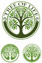 Tree of life, tree with the green leaves, vector logo.