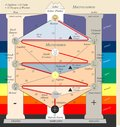 The Tree of Life from Kabbalah