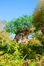 Tree of life the landmark attraction disney s animal kingdom celebrating it s th anniversary on the nd april Royalty Free Stock Photography