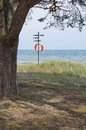 Tree and life saving buoy Royalty Free Stock Photo