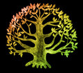 Tree of life, sketch Stock Photos