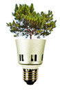 Tree in a lightbulb green energy concept ideal for advertising Stock Photos