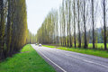 A tree lined country road near Marysville, Australia. Royalty Free Stock Photo