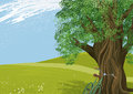 Tree in a meadow illustration of an old Royalty Free Stock Photo