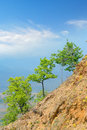 Tree on mountain horizon green environment and and blue clear sky clouds vertical macedonia Royalty Free Stock Image