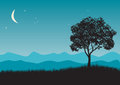 Tree in night scene vector illustrations Stock Photo