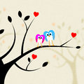 Tree Owls Indicates Heart Shapes And Branch Royalty Free Stock Photo