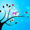 Tree Owls Represents Valentine's Day And Forest Royalty Free Stock Photo