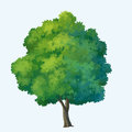Tree paint for cartoon isolated on white background Royalty Free Stock Images
