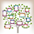 Tree and photos memories with photo frames insert your into frames Royalty Free Stock Photography
