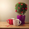 Tree plant with heart shapes and cups of tea for Valentine's day celebration