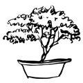 Tree in pot doodle