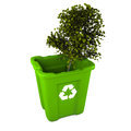 Tree in recycle bin Stock Photos