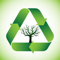 Tree in recycle symbol bald green Stock Photography