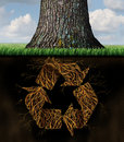 Tree recycle symbol concept as underground roots shaped as arrows from the recycling icon as a world environmental and Stock Images