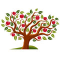 Tree with ripe apples harvest season theme illustration fruitfulness and fertility idea symbolic image Royalty Free Stock Photos