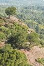 Tree on a rocky hill, MontRoig del Camp, Tarragona, Catalonia, S