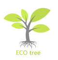 Tree with roots eco vector illustration Royalty Free Stock Photos