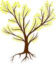 Tree Roots Logo - vector Royalty Free Stock Photo