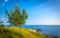 Tree and sea landscape of coastline at koh samed island in thailand Stock Photo