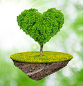 Tree in the shape heart Stock Photo