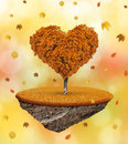 Tree in the shape heart little island with autumnal Stock Images
