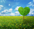 Tree in the shape of heart, valentines day background Royalty Free Stock Photo