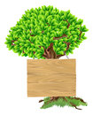 Tree sign illustration of a bright green with a wooden suspended from it Royalty Free Stock Images
