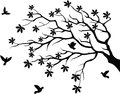 tree silhouette with bird flying Royalty Free Stock Photo