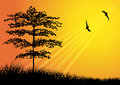 Tree silhouette with bird flying illustration of Royalty Free Stock Image